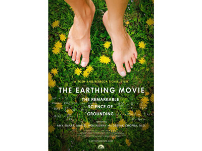 DVD The Earthing Movie